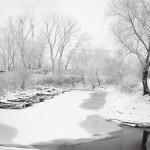 Marina Sava pod snegom