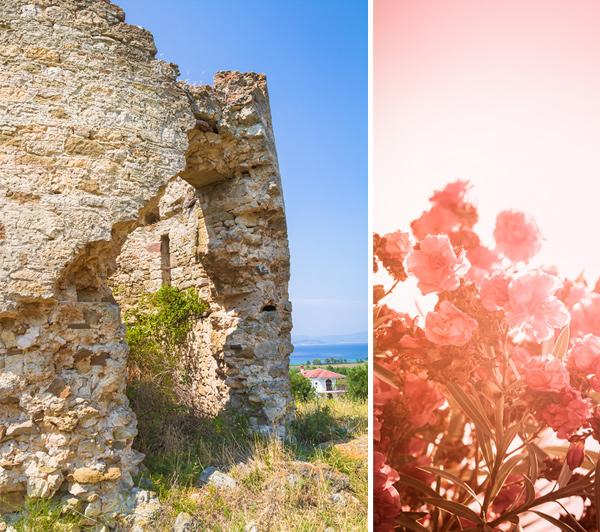 Οstaci stare vetrenjače i oleander
