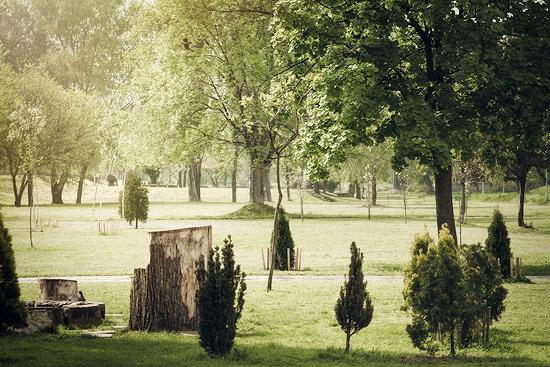 Naš park na savskom keju