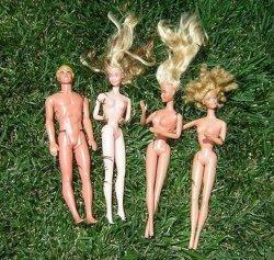 Barbike u društvu Kena