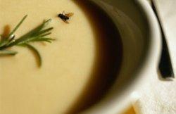 Muva u supi ili trn u oku?